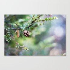 Little Cone Canvas Print