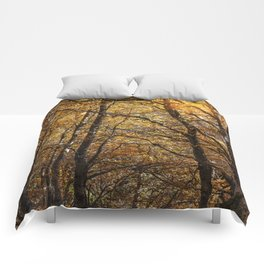 Forest in Autumn time Comforters