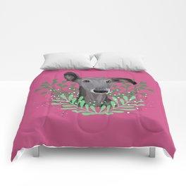 Galgo Comforters