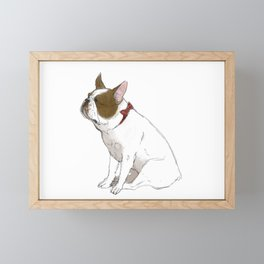 French bulldog in Red Framed Mini Art Print