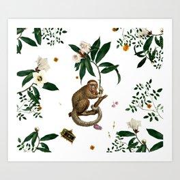 Monkey World: Amber-Ella - White Art Print