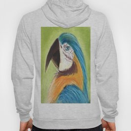 Parrot Hoody