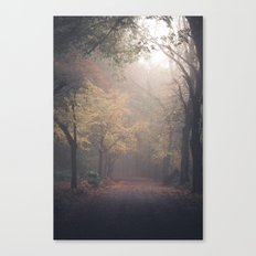 Walking in Woods Canvas Print