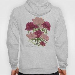 Yarrow: Achillea Millefolium Hoody