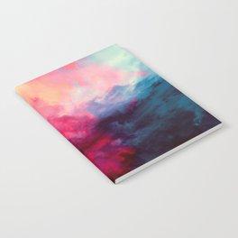 Reassurance Notebook