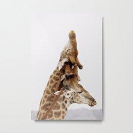 Giraffe Totem Pole Metal Print