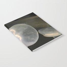 jelly Notebook