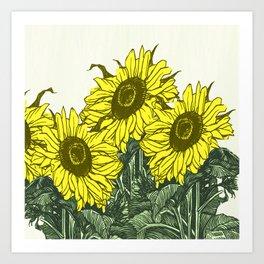 Sunflower sojourn Art Print