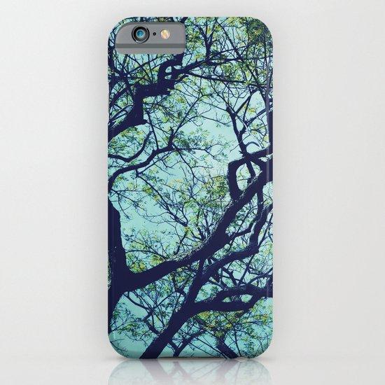 Rain Tree iPhone & iPod Case