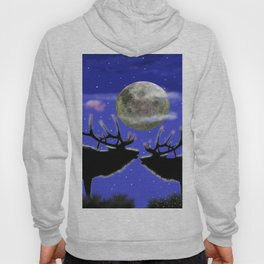 Kindred spirits Hoody