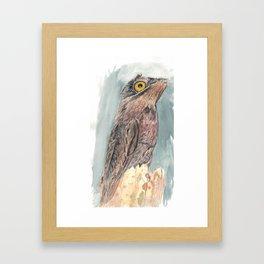 Watercolor Birds: Common Potoo Framed Art Print