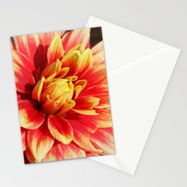 In the Quiet Breath of Morning Stationery Cards