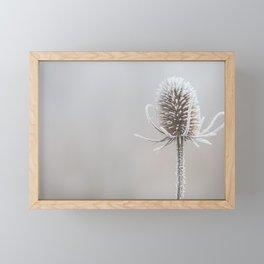 Thistle in the winter Framed Mini Art Print