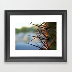 The Thorns In Life Framed Art Print