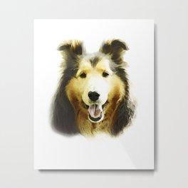 Cute Shetland Sheepdog Puppy Metal Print