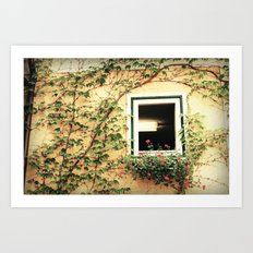 Window and ivy Art Print