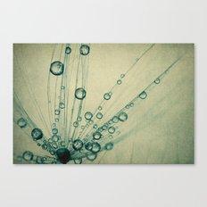 Vintage Dandy Drops Canvas Print