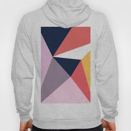 Modern Poetic Geometry Hoody
