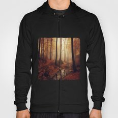 Forest Creek At Sunrise Hoody