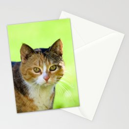 Beautiful mottled cat in garden. Stationery Cards