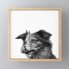 Cute dog portrait Framed Mini Art Print