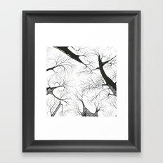 Galhos Framed Art Print