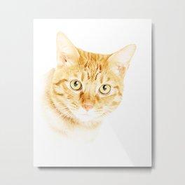 Yellow Cat Metal Print