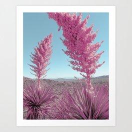 Pink Yuccas Art Print