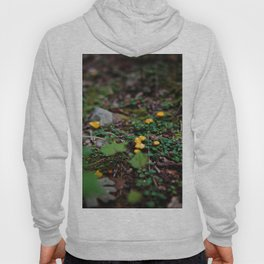 Fairy World Hoody