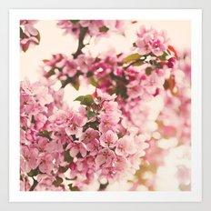 Blossoms  Art Print