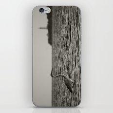 The flats  iPhone & iPod Skin