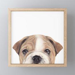 Bulldog Original painting Dog illustration original painting print Framed Mini Art Print