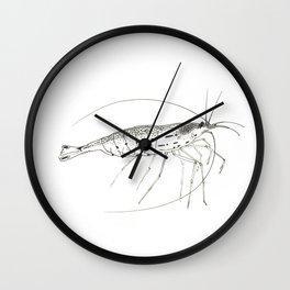 Amano Shrimp Wall Clock