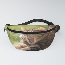 Meow Fanny Pack