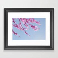 Blossoms - In Memory of Mackenzie Framed Art Print