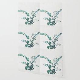 Eucalyptus II Wallpaper
