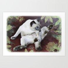 obscene cat Art Print