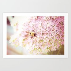 Nature of a Bee Art Print