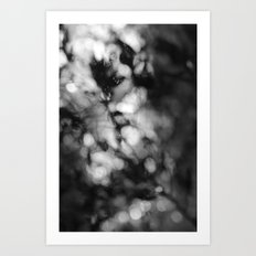 Faded Streams  Art Print