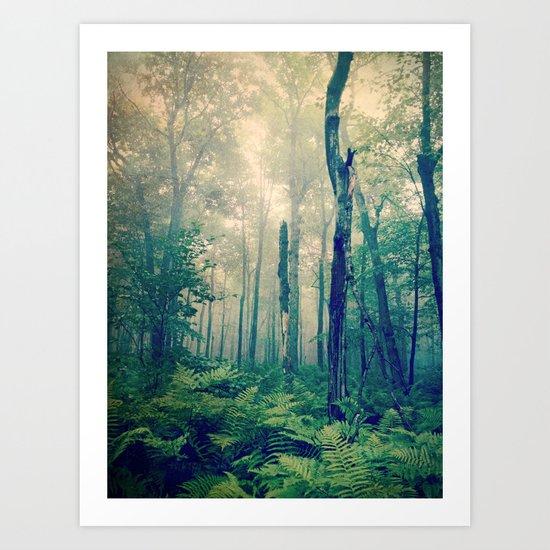 Walk to the Light Art Print