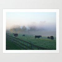 Grazing in the Mist Art Print