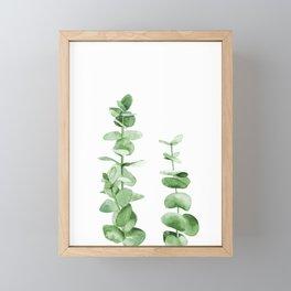 Eucalyptus leaves. Framed Mini Art Print