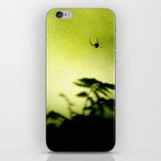 weave me a web iPhone & iPod Skin