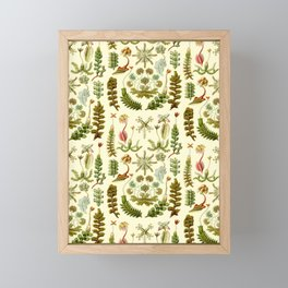 Ernst Haeckel - Hepaticae Framed Mini Art Print