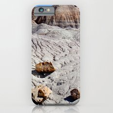 The Painted Desert & Petrified Forest iPhone 6s Slim Case