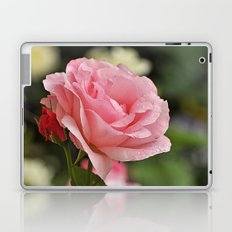 Pink wet rose Laptop & iPad Skin