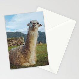 No Prob-llama - Art Print Stationery Cards