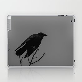 Perched Laptop & iPad Skin