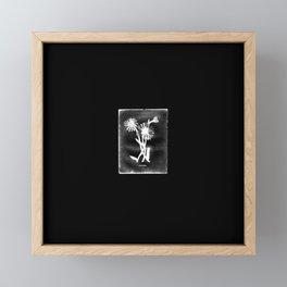 Daisy Black! Framed Mini Art Print