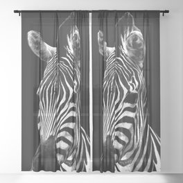 Zebra Black Sheer Curtain